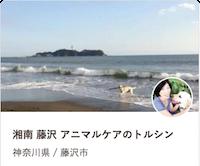 doghost_shonan1